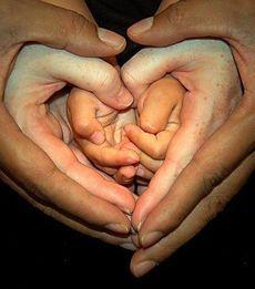 Що подарувати батькам на 14 лютого?