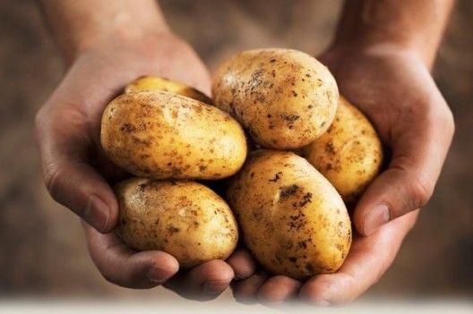 Що приготувати на вечерю з картоплі? 4 універсальних рецепта