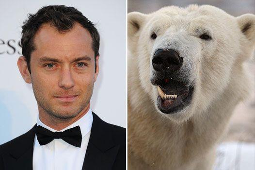 Джуд лоу і radiohead рятують білих ведмедів