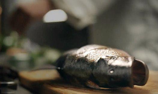 Риби теж люди: неоднозначний ролик організації peta